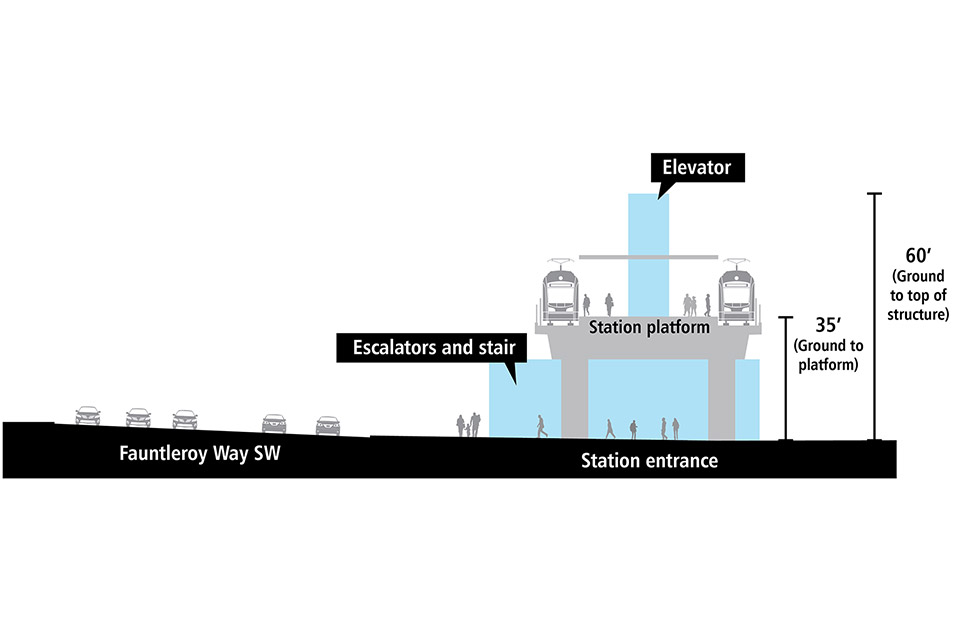 Cross-section drawing of elevated light rail station platform. There is a track and train on each side of the elevated station platform. Station entrance is adjacent to Fauntleroy Way Southwest with elevator, escalators and stairs. It is approximately 30 feet from the ground to the platform. The elevator structure extends above the platform and is approximately 60 feet from the ground to the top of the structure.